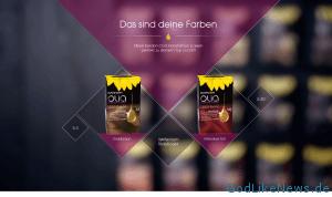 Ergebnisbeispiel einer online Typberatung mit Guido und Olia Garnier